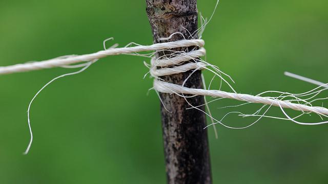 By woodleywonderworks/ Flickr